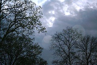 Alabama sky