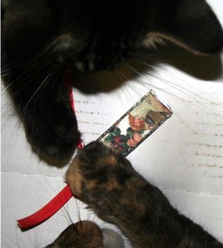 Kittyornament