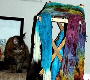 Cat_n_yarn