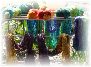 Todays_dyeing